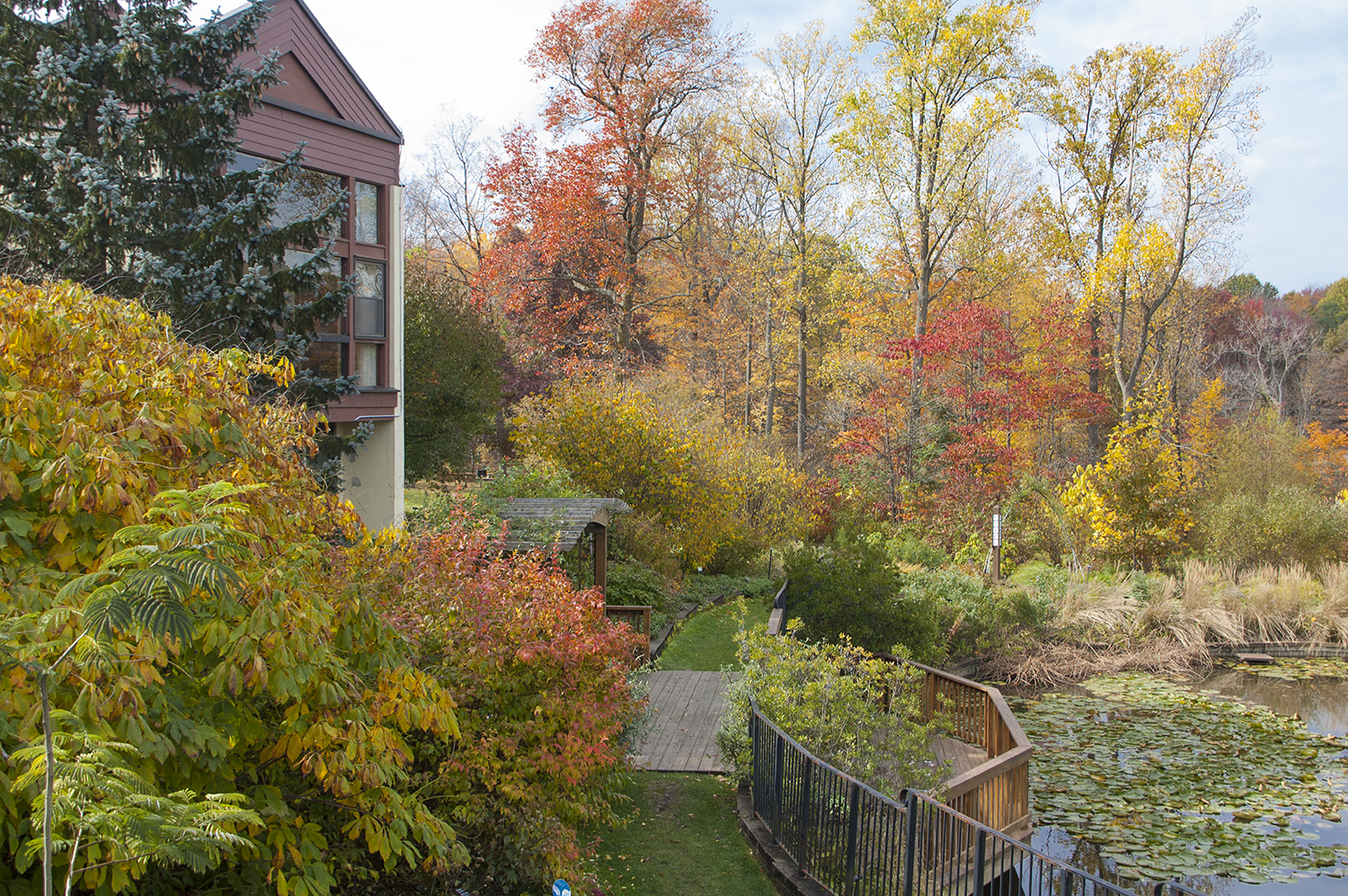 The Great Outdoors: Greenspace & Parks in Cleveland & Akron/Canton ...